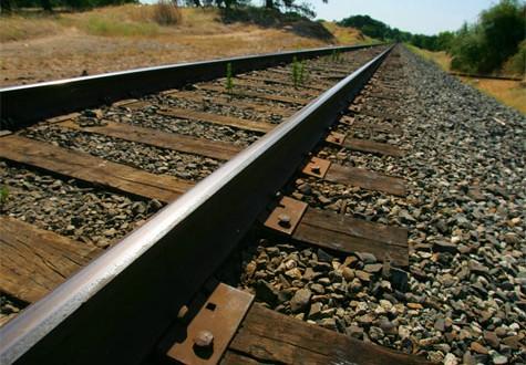 CIM Coimbra contra nova linha ferroviária entre Aveiro e Vilar Formoso