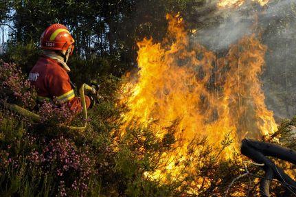 Bombeiros desconfiam de fogo posto em Oliveira do Hospital