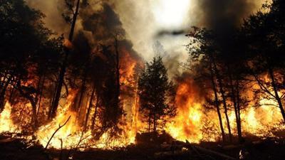 Quatro fogos activos, incluindo um no Parque Natural da Serra da Estrela e outro na Pampilhosa