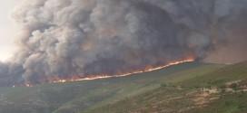 Dois incêndios activos em Nelas, depois de extintos os de COIMBRA E GUARDADois incêndios activos em Nelas, depois de extintos os de COIMBRA E GUARDA