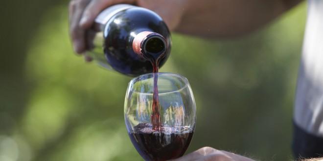 Produção de vinho do Dão pode ter quebra de 25 por cento este ano