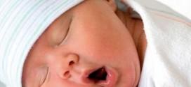 Seia quer promover natalidade e fixar população