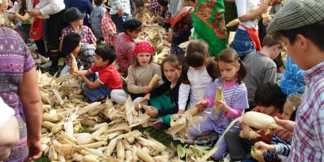 Meruje regressa ao passado para lembrar o ciclo tradicional do pão aos mais novos