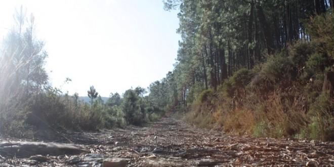 População continua indignada e a reclamar dos maus acessos da Quinta da Tapada