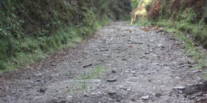 Membros da Assembleia de Freguesia do CDS em Alvôco das Várzeas criticam inércia da Junta sobre estrada da Tapada